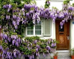 decoracion rústica con flores